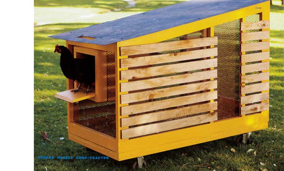 Modern chicken coops images galleries for Modern chicken coop